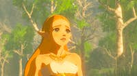 Nintendo Nintendo The Legend of Zelda: Breath of the Wild S